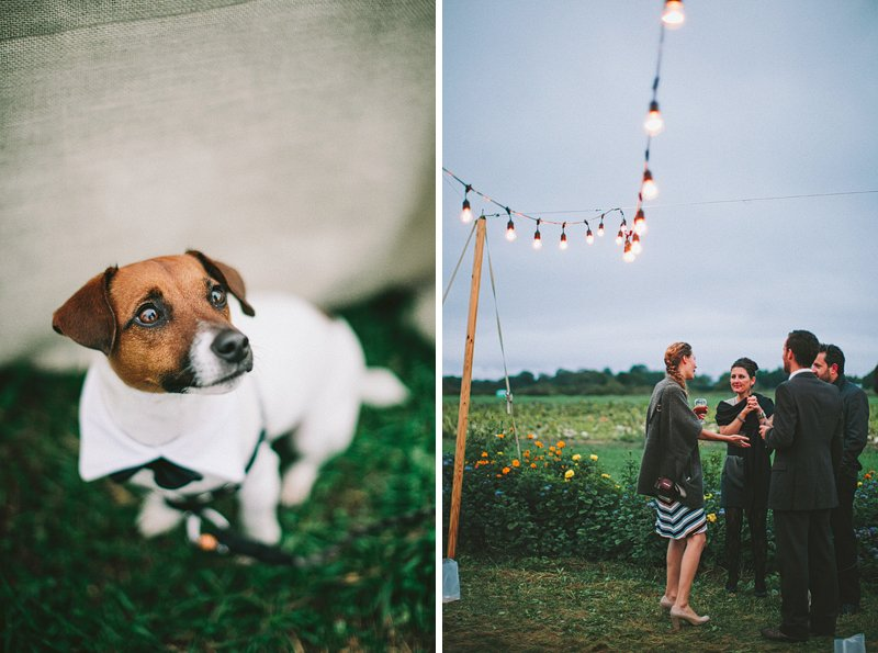 string lights wedding farm vintage