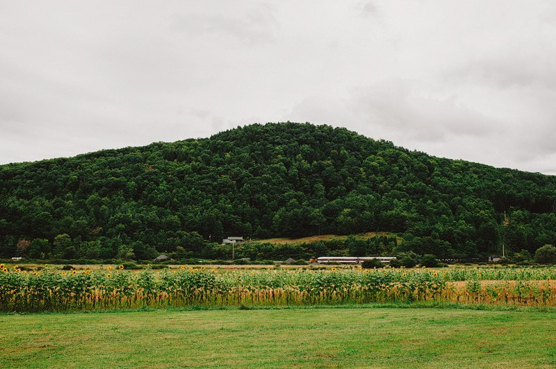 roxbury ny farm wedding